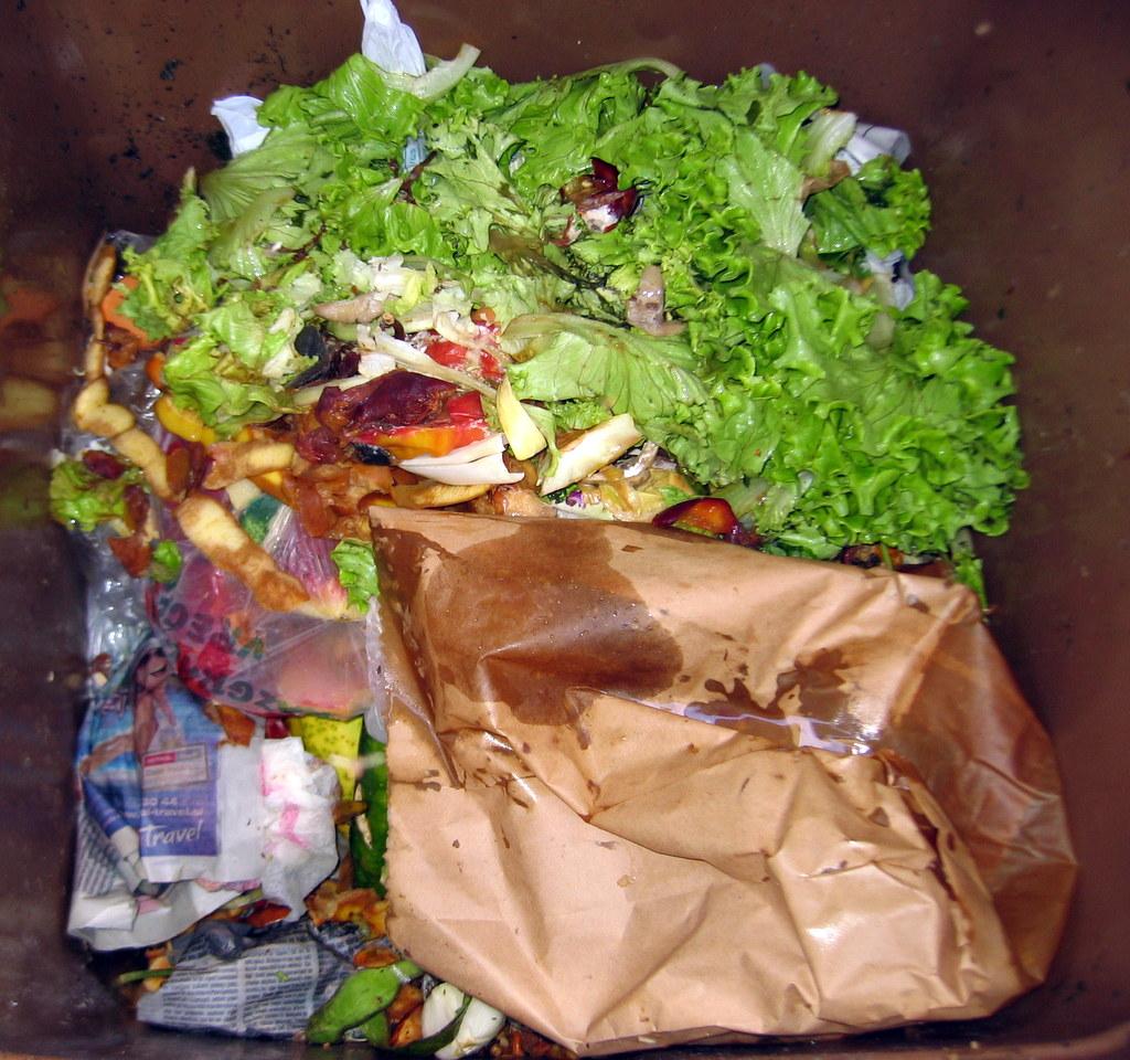 Biološki odpadki v rjavem zabojniku